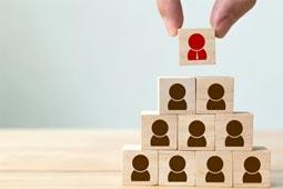 מנהיגות - ארז לוי - פיתוח עסקים לצמיחה