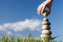 ניהול ביצועי ספק - ארז לוי - פיתוח עסקים לצמיחה