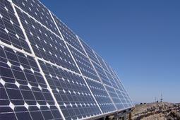 שרשרת אספקה סולארית - ארז לוי - פיתוח עסקים לצמיחה