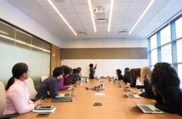 ישיבת דירקטוריון עסקי - ארז לוי - פיתוח עסקים לצמיחה