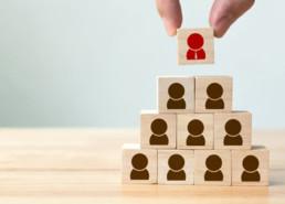 ייעוץ ארגוני ומשאבי אנוש - ארז לוי פיתוח עסקים לצמיחה