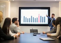הקמה וניהול דירקטוריון עסקי - ארז לוי פיתוח עסקים לצמיחה